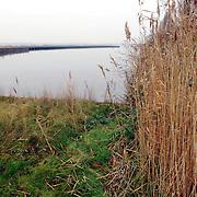 NLD/Huizen/20060104 - Kade en water uitloper Gooimeer bij de jachthaven Huizen waar een nieuwe haven dient te komen, groen, muur, wal, walkant, plas,