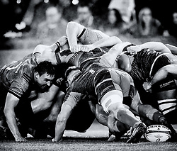 Jack O'Donoghue of Munster stares out Olly Cracknell of Ospreys during an Ospreys scrum <br /> <br /> Photographer Simon King/Replay Images<br /> <br /> European Rugby Champions Cup Round 1 - Ospreys v Munster - Saturday 16th November 2019 - Liberty Stadium - Swansea<br /> <br /> World Copyright © Replay Images . All rights reserved. info@replayimages.co.uk - http://replayimages.co.uk