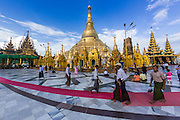 15 JUNE 2013 - YANGON, MYANMAR: People walk around Shwedagon Pagoda. Shwedagon Pagoda is officially known as Shwedagon Zedi Daw and is also called the Great Dagon Pagoda or the Golden Pagoda. It is a 99 meter (325 ft) tall pagoda and stupa located in Yangon, Burma. The pagoda lies to the west of on Singuttara Hill, and dominates the skyline of the city. It is the most sacred Buddhist pagoda in Myanmar and contains relics of the past four Buddhas enshrined: the staff of Kakusandha, the water filter of Koṇāgamana, a piece of the robe of Kassapa and eight strands of hair from Gautama, the historical Buddha. Burmese believe the pagoda was established as early ca 540BC, but archaeological suggests it was built between the 6th and 10th centuries. The pagoda has been renovated numerous times through the centuries. Millions of Burmese and tens of thousands of tourists visit the pagoda every year, which is the most visited site in Yangon. PHOTO BY JACK KURTZ