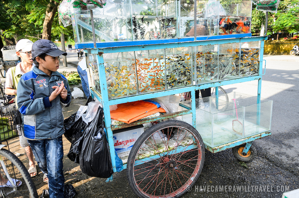 A couple of boys with a cart of goldfish for sale in Hue, Vietnam.