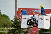 Electricity workers clear vines growing up power poles and causing short and power outages -  San Juan Cosala, Jalisco, Mexico