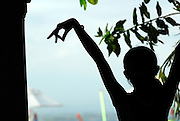 Silhouette of child dancing at traditional Balinese dance school. Sanur, Bali, Indonesia