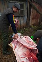 Woroncza, obwod grodzienski, Bialorus, 08.11.2009. N/z rozbior miesa zabitej swini fot Michal Kosc / AGENCJA WSCHOD