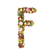 Capital Letter F Part of a set of letters, Numbers and symbols of the Alphabet made with flowers, branches and leaves on white background