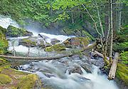 Deception Falls Stevens Pass Washington State