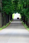 Mazury, 2008-07-17. Mazurska droga w okolicach Gołdapi