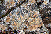 """Chain ring attached to rock. Panorama Course trail. Karasawa cirque is cradled by the Hotaka Mountains, in the """"Northern Japan Alps"""" (Hida Mountains) in Chubu-Sangaku National Park, Japan. Within the cirque, two lodges provide beds and meals for hikers and climbers: Karasawa Goya and Karasawa Hutte. Also known as Mount Hotaka or Hotaka-dake, the Hotaka Mountains reach 3190 meters elevation atop Mount Oku-Hotaka, Japan's third highest peak. About 2000 meters in diameter, the cirque bottoms out at 2300 m elevation. Snow melting here forms the River Azusa which flows through Kamikochi valley below."""