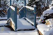 20180101_home_snow_blue_sky_diane_duthie_designs_
