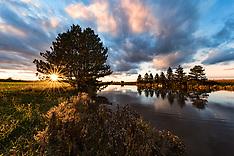2017 Fall ride home - Deer, pond, beaver, sunset