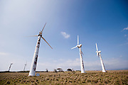 Unused electricity generating wind farm on the Big Island of Hawaii.