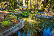 Garden pond at Tallac Historic Site, Lake Tahoe, California USA