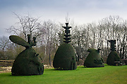 Yew Tree Avenue, a collection of clipped yew trees in Clipsham, Lincolnshire, United Kingdom