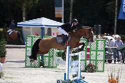 Kwint Ernest (NED) - Abunola<br /> KWPN Paardendagen - Ermelo 2012<br /> © Dirk Caremans