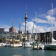 Moored yachts in Viaduct Basin. showing Sky Tower, Auckland, New Zealand, .Located in the heart of Auckland City, Viaduct Basin and Harbour is a first class residential, commercial and entertainment precinct..The marina caters to commercial vessels, pleasure craft and super yachts with 150 marina berths ranging in size up to 60 metres..Viaduct Basin hosts many fabulous events including the past America's Cup defences, Louis Vuitton Regattas, the Volvo Round the World Race stopover, Auckland International Boatshow and New Zealand Fashion Week..Visitors can explore New Zealand's rich maritime history at Voyager Maritime Museum, cruise the harbour on a charter yacht, view the yachts berthed in the harbour and enjoy the world class hospitality at the many bars and restaurants that line the waters edge..New Zealand's largest marine service precinct, Westhaven, lies a short walk to the west.. Auckland, New Zealand. 3rd November  2010. Photo Tim Clayton.
