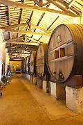 Chateau St Martin de la Garrigue. Languedoc. Barrel cellar. Wooden fermentation and storage tanks. Wooden cross-beam roof. France. Europe.