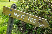 GOES - Next Tee, gans, Golfbaan De Goese Golf,   op Zuid-Beveland, COPYRIGHT  KOEN SUYK