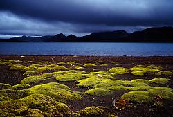 Mosi og fjallasýn við Langasjó / Moss and nice scenery at Langisjor in the highlands of Iceland