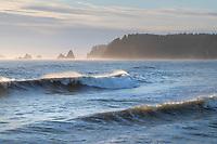 Waves approaching Rialto Beach Olympic National Park Washington
