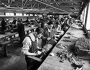 Newbridge Cutlery Special.25/07/1958..At the turn of the 20th century, the town of Newbridge, in the heart of Co. Kildare was a thriving garrison community. This all changed when the British army moved out in 1921, leaving a huge economical vacuum. As Newbridge entered the 1930's it was a town in crisis. The Irish Government, aware of the problem throughout Ireland, encouraged the setting up of new manufacturing enterprises in the non- traditional areas outside the major cities..For Newbridge, the break was to come in the form of a local school teacher Senator Cummins, a national leader of the Labour party - William Norton and Joe McGrath Snr who previously played a major part in the historic treaty negotiation of 1921..In 1934 the Newbridge Cutlery Company was established and quickly become renowned for its quality craftsmanship and design ethos. It was the 1970's, which were proven to be the biggest challenge to Newbridge Cutlery. It was at this time that Dominic Doyle joined the organisation as chief executive. He steered the company to be more focussed and specialised..Through down sizing and focusing on the niche market for unique, quality tableware, the company survived this period of trouble and right through the infamous recession years of the 80's.