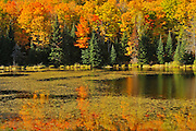 AUtumn colors on Potash Lake<br /> Paudash<br /> Ontario<br /> Canada