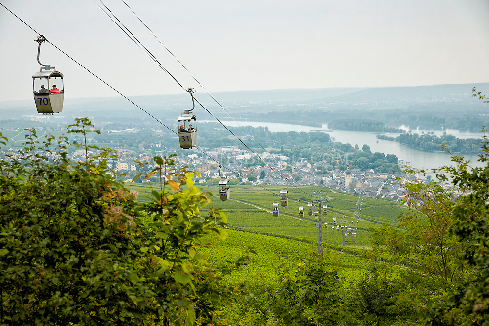 View from cable cars over the vineywards while heading to the Niederwald Monument, Rüdesheim, Germany.