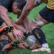 20191109 Rugby, Top12 : Petrarca Padova vs Viadana