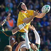 Dan Vickerman, Australia, wins the ball from Victor Matfield, South Africa, during the South Africa V Australia Quarter Final match at the IRB Rugby World Cup tournament. Wellington Regional Stadium, Wellington, New Zealand, 9th October 2011. Photo Tim Clayton...