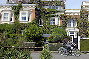 © Licensed to London News Pictures. 26/05/2013. London, UK People cycle past a house with laburnum hanging from it's roof. People enjoy the warm Bank Holiday weather along the banks of the River Thames in West London today 26th May 2013. Photo credit : Stephen Simpson/LNP
