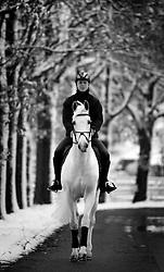 Larino in de sneeuw<br /> Horses in the snow<br /> Team Nijhof<br /> Photo© Dirk Caremans