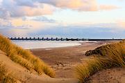 Nederland,Zuid-Holland / Zeeland, Gemeente, 26-03-2016; <br /> <br /> <br /> copyright foto/photo Siebe Swart