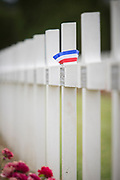 Close-up of white crosses at World War One cemetery, Douaumont Ossuary, Verdun, France