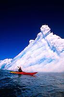 Sea kayaking in Columbia Bay (near Columbia Glacier), Prince William Sound, Valdez, Alaska USA