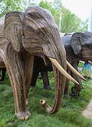 Elephants On The Mall