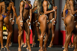 Sept.16, 2016 - Las Vegas, Nevada, U.S. -  Women compete in the Bikini Olympia contest during Joe Weider's Olympia Fitness and Performance Weekend.(Credit Image: © Brian Cahn via ZUMA Wire)