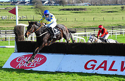 Well Tom and Daniel Holden (blue star & cap) jump to win the Ballymore Handicap Steeplechase during day two of the October Festival at Galway Racecourse.
