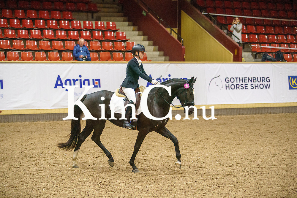 Sibylla EE (SWB) sto 2017 e Sibelius (SWB) u Delvue e De Niro Erika Göthamn Eirefelt åld 40 uppf Eirefelt Equestrian AB äg Eirefelt Equestrian AB Photo: KimC.nu by Ateni AB