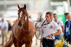 Verlooy Jos, BEL, Igor<br /> World Equestrian Games - Tryon 2018<br /> © Hippo Foto - Sharon Vandeput<br /> 17/09/2018