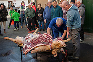 A professional butcher (in blue overalls) and some more men butcher a pig as people is looking in traditional way pig slaughtering.  Doneztebe (Basque Country). December 08. 2016. The slaughter traditionally takes place in the autum and early winter and the work often is done in the open. (Gari Garaialde / Bostok Photo)