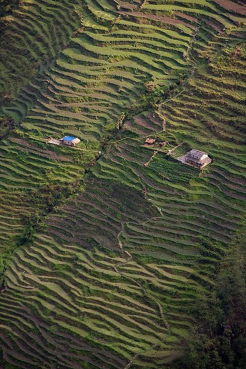 Farms and terraced fields on a steep hillside along the Annapurna Sanctuary Trek outside Chhomrong village, Himalaya Mountains, Nepal.