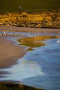 Red Strand, in Dunowen, near Galley Head, West Cork
