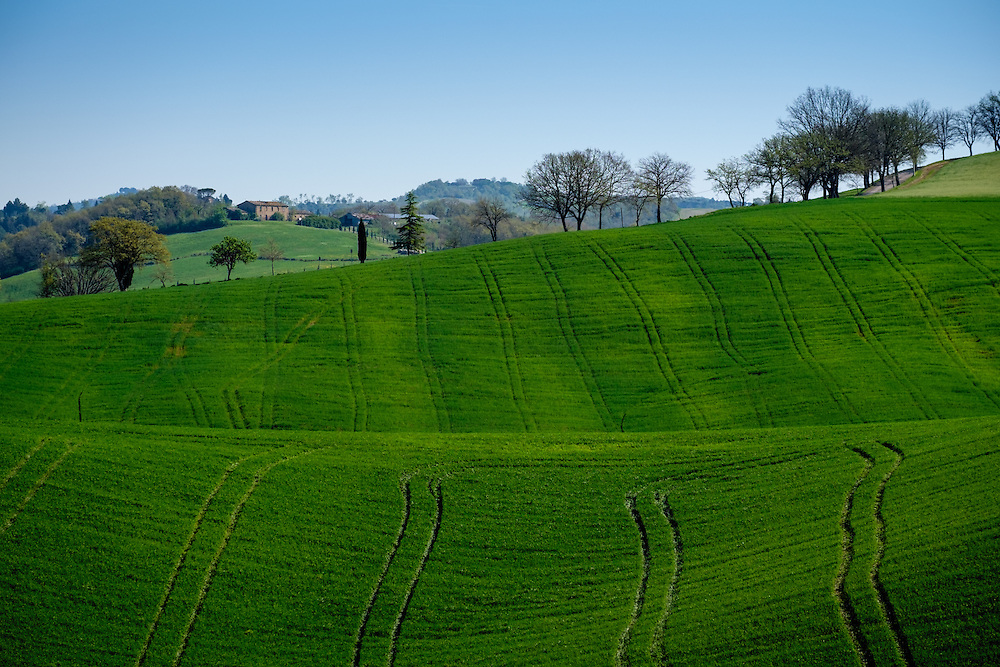 MONTALCINO, ITALY - CIRCA MAY 2015:  Landscape in the Tuscan region of Montalcino. in the Province of Siena