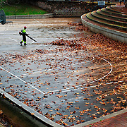 Gardener removing the leaves of the trees in a basketball court.Sant Cugat del Valles. Barcelona province.Spain.