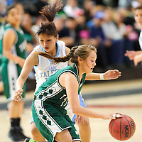 020813  Adron Gardner<br /> <br /> Tuba City Warrior Shauntee Chee (12) drives past Alchesay Falcon Whitney Nosie (11) in Chinle Friday.