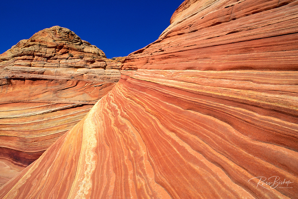 "Swirling sandstone formation known as ""The Wave"" in the Coyote Buttes area, Paria Plateau, Paria Canyon-Vermilion Cliffs Wilderness, Arizona."
