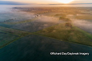 63893-03708 Sunrise and fog aerial view Marion Co. IL