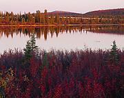 Trans Alaska Pipeline reflected in small lake east of Paxson Lake (MP 630), Alaska.