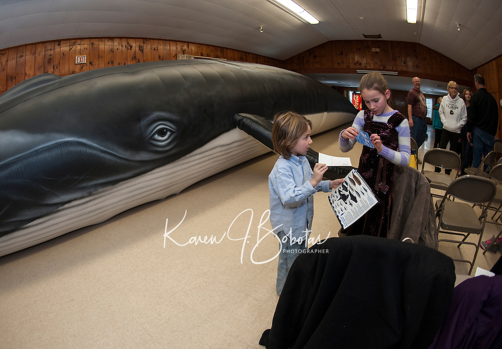 """Blue Ocean Society for Marine Conservation visits Leavitt Park Clubhouse with """"Ladder"""" a 65 foot inflatable Fin whale. Karen Bobotas for the Laconia Daily Sun"""