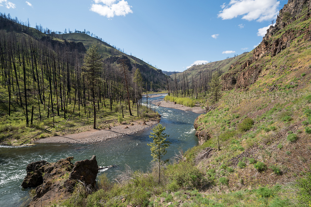 The Wenaha River in Northeast Oregon.