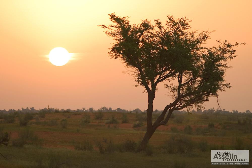 Sunrise over the Sahel near Gorom Gorom, Northeastern Burkina Faso.