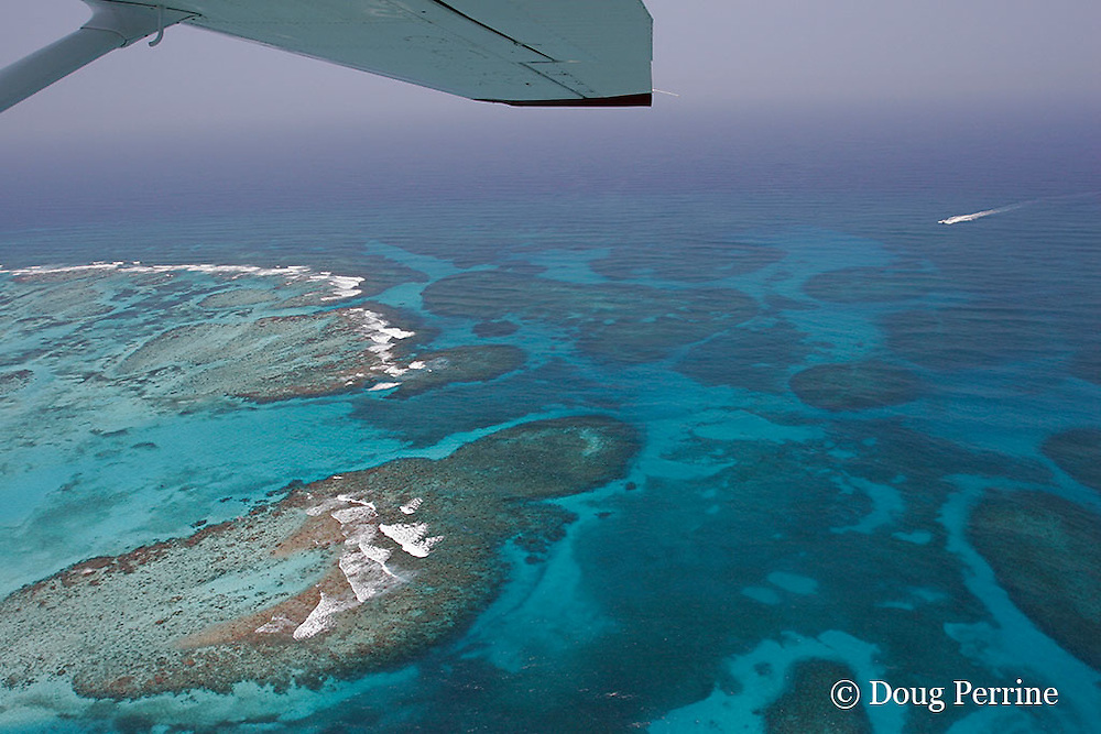 aerial view of Gladden Spit, a finger of the Belize Barrier Reef where the reef takes a right-angle bend, and currents attract fish spawning aggregations; the boat on the right is returning from the drop-off to the channel at lower left, passing into the lagoon;  near Placencia, Stann Creek District, Southern Belize, Central America ( Caribbean ),  Gladden Spit & Silk Cayes Marine Reserve